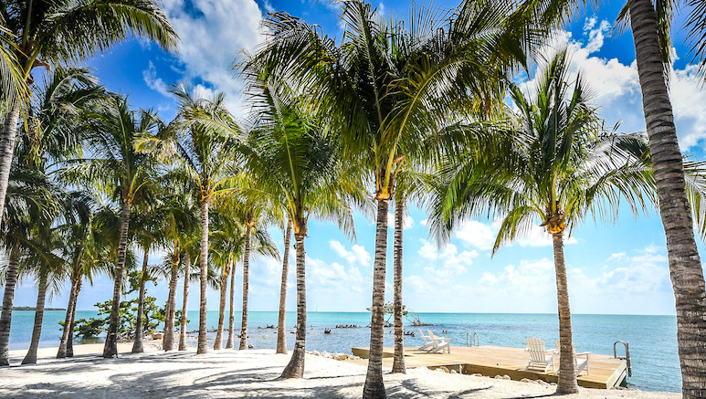 Rooms open to balconies or patios. 5 Reasons To Make The Gorgeous Isla Bella Beach Resort Your Vacay Home Base In The Florida Keys Video Beach Resorts Florida Family Vacation Beach