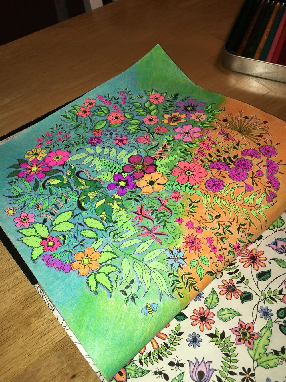 Johanna Basford. Secret Garden. Adult Coloring.