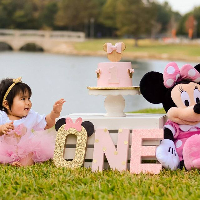 Minnie Mouse Birthday Theme First Birthday One Letters