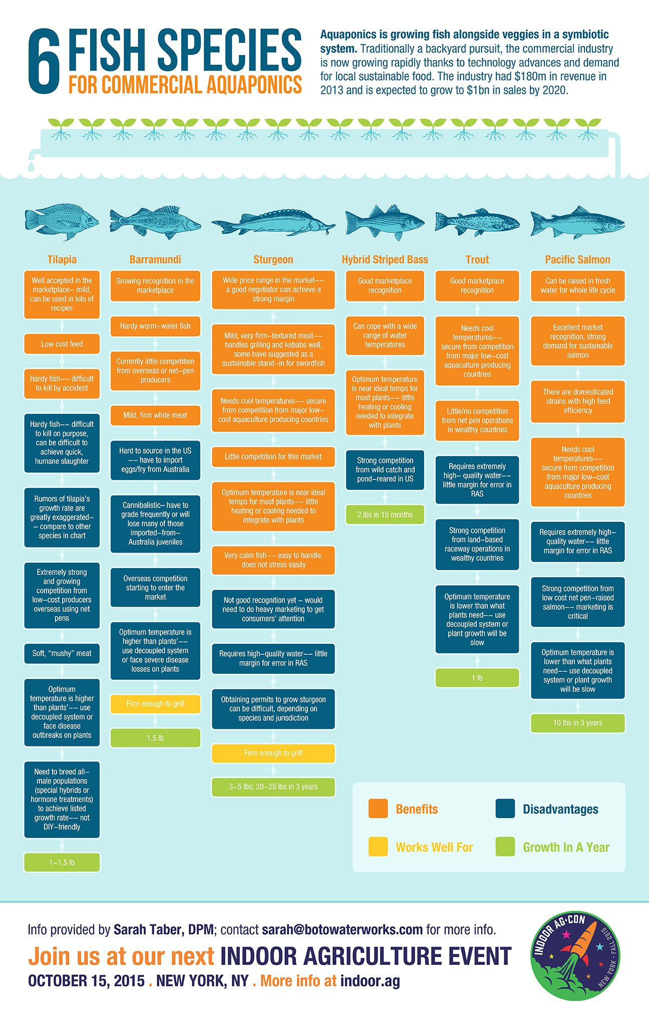 Infographic Six Fish Species For Commercial Aquaponics