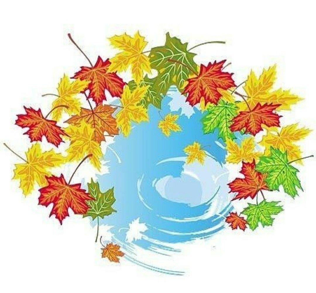 Картинка с осенним пейзажей. Лужа. #осень #картинки_для ...