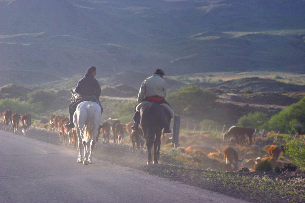 CAVIAHUE, NEUQUEN, PATAGONIA ARGENTINA: Gauchos volviendo de la invernada. | Flickr - Photo Sharing!