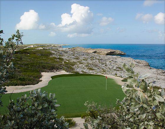 Par 3 & Backyard Golf CoursesAccording to industry data, a ...