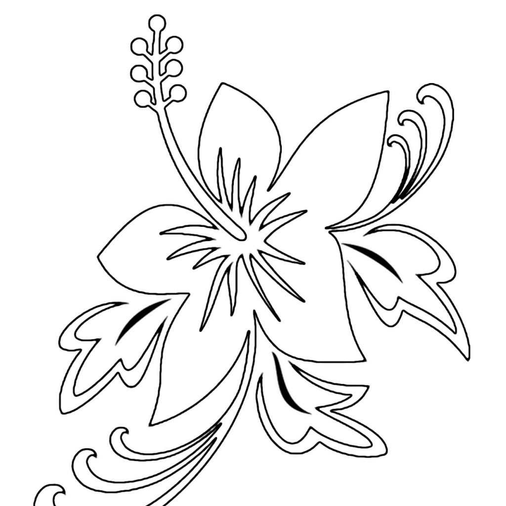 Displaying 10 Images For Tropical Flower Coloring Pages Printable Flower Coloring Pages Flower Coloring Pages Bird Coloring Pages