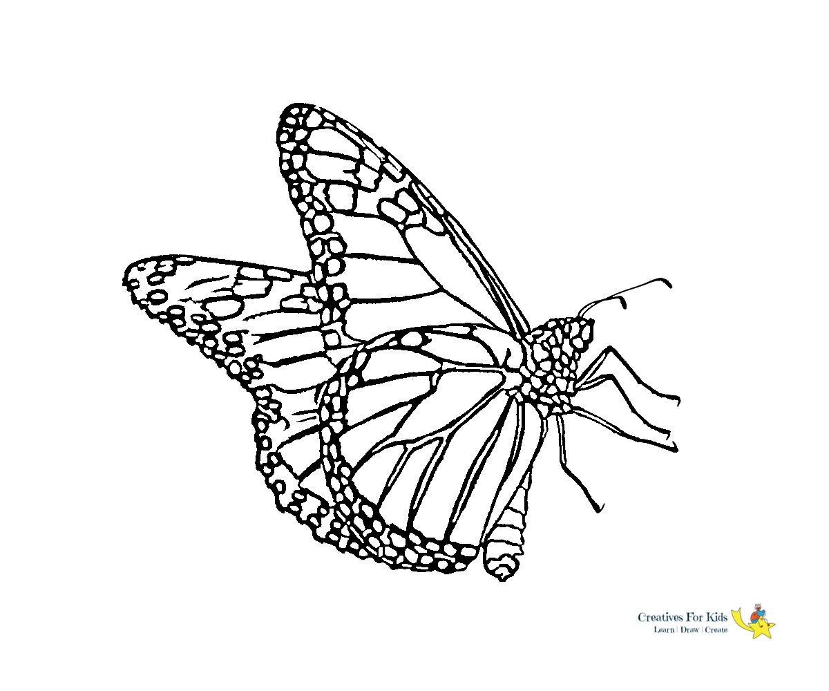 27 Exclusive Photo Of Free Butterfly Coloring Pages Entitlementtrap Com Butterfly Coloring Page Coloring Pages Colorful Butterflies [ 1000 x 1200 Pixel ]