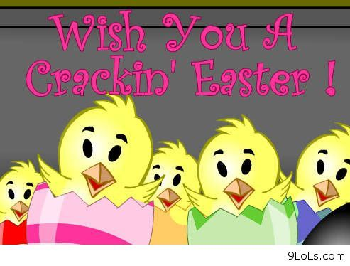 Funny Easter Cards With Quotes Sayings For Facebook Friends Easter Quotes Funny Easter Quotes Happy Easter Quotes