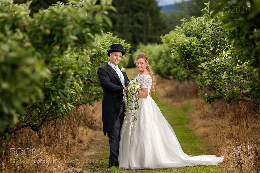 Bride and groom in garden by johnandresamuelsen