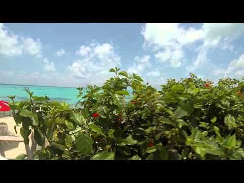 An Isla Mujeres Minute Episode 3 - YouTube