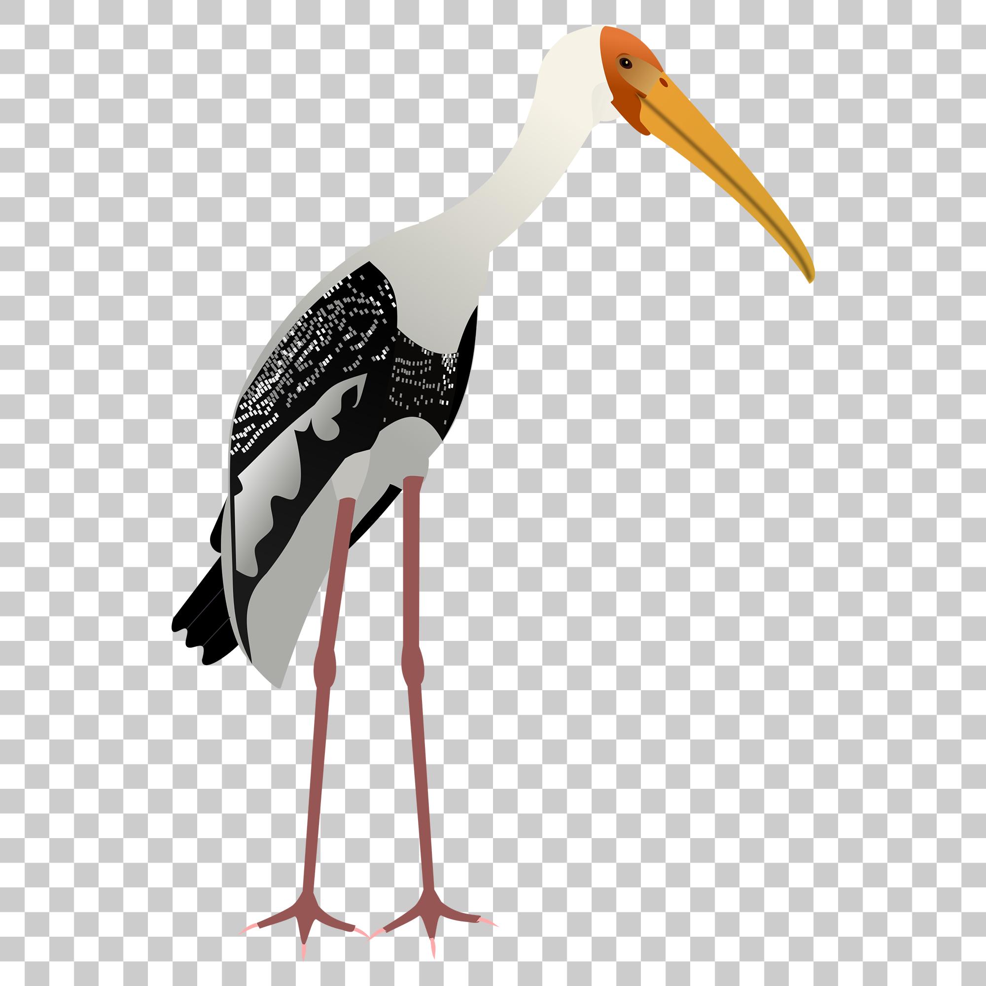 Crane Stork Bird Png Image With Transparent Background Stork Bird Stork Png Images