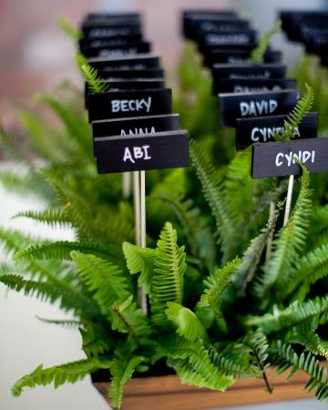 Green wedding Wooden escort cards placed in fresh fern boxes