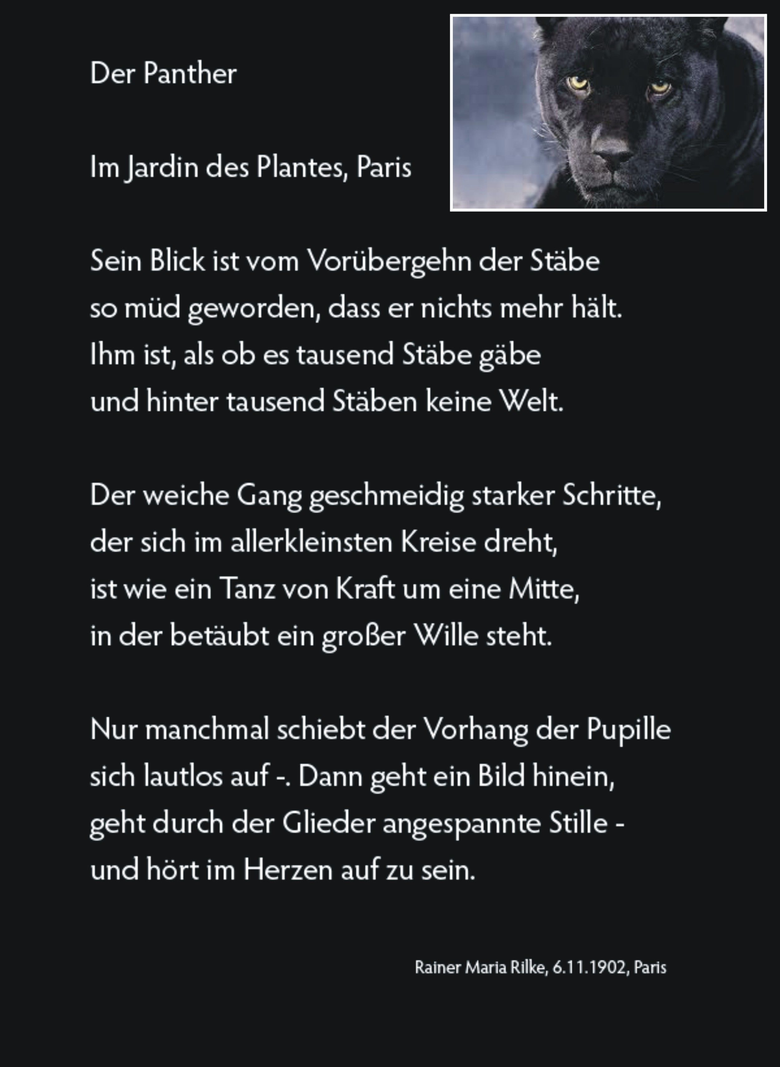 """Rainer Maria Rilke Poetry Quotes Poems Panthers Bohemia Austria Depression Now Thoughts Quotes """""""