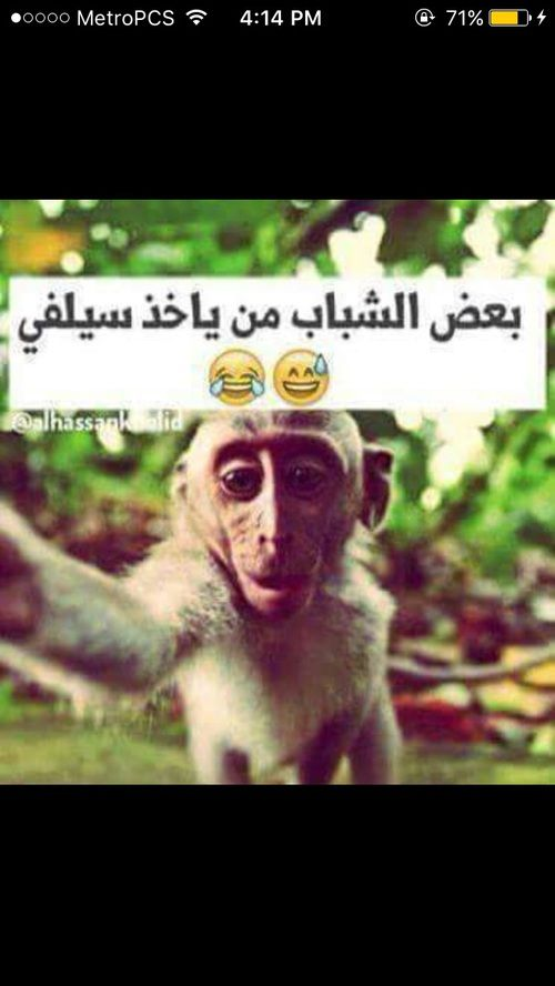 صور مضحكة اجمل الصور المضحكة مع التعليق مكتوب عليها مسخرة Arabic Funny Funny Pictures Arabic Jokes