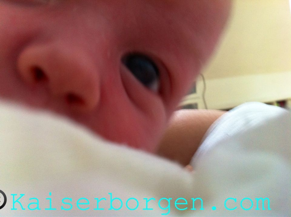 New Kid on the Blog! New post at kaiserborgen.com