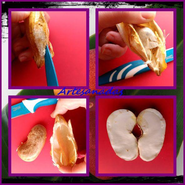 mango 5Cosmética 100 % Natural Con El Hueso De Mango (Manteca de Mango Casera)