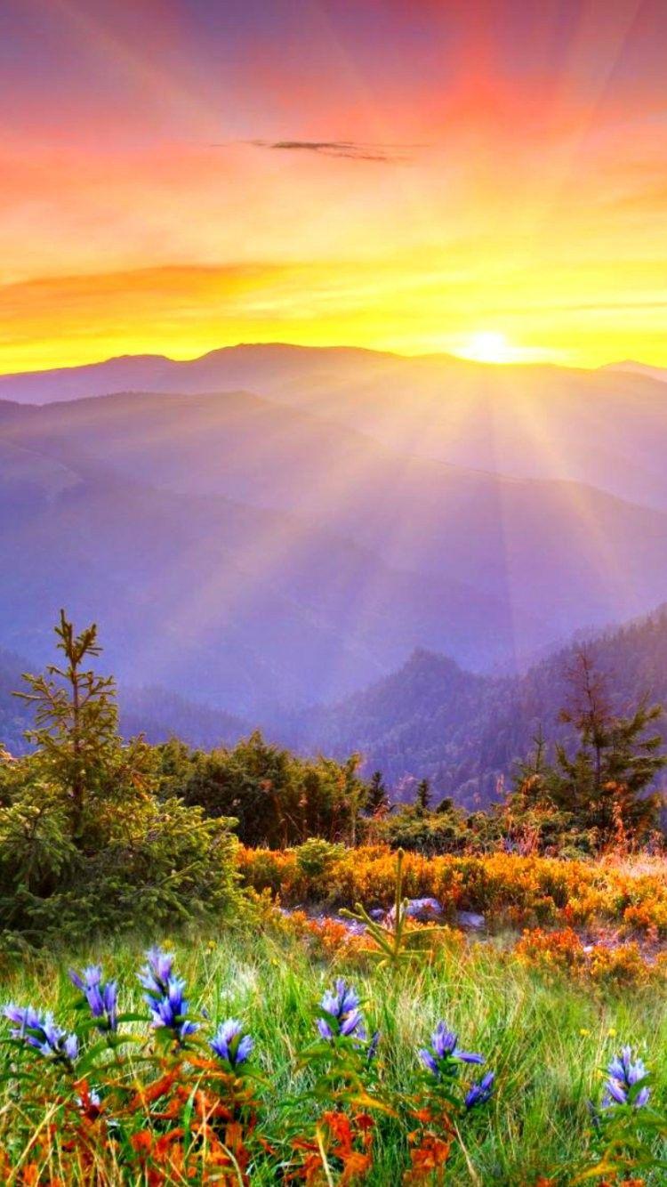 Beautiful Sunrise iPhone 6 Wallpaper 34171 Landscape