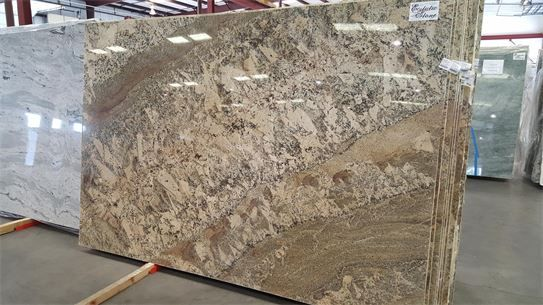 Netuno Bordeaux Granite Countertop Slab For Your Dream Kitchen Or