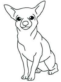 kleurplaten hond topkleurplaat nl in 2020 honden