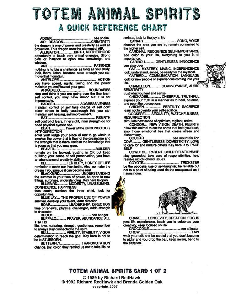 Totem Pole Animal Meanings Galleryhip Com The Hippest