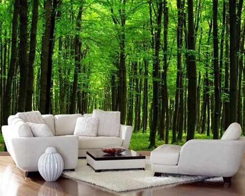 Wallpapers decorar paredes con naturaleza living rooms for Murales en paredes interiores