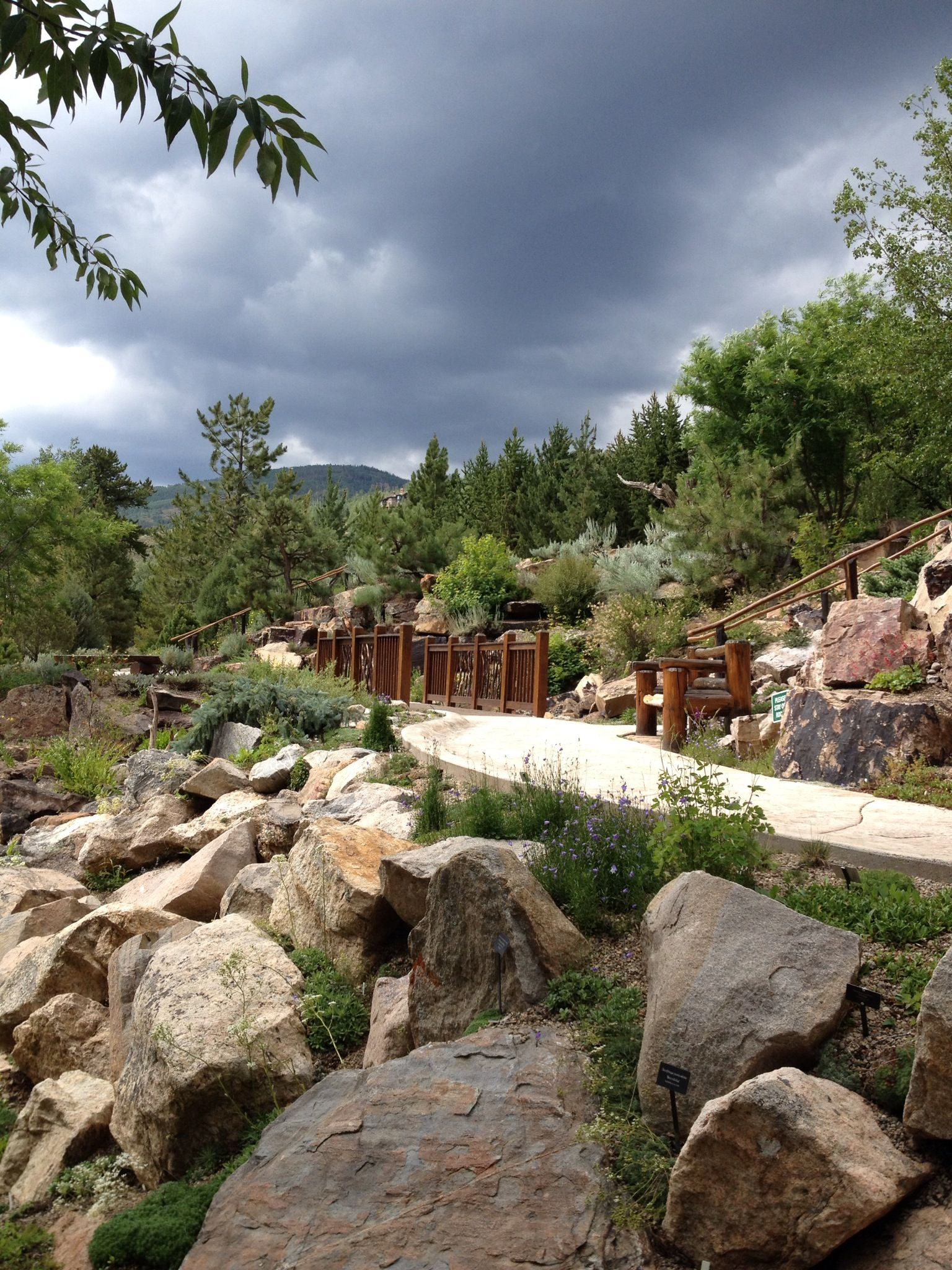 The Betty Ford Alpine Gardens In Vail, Colorado