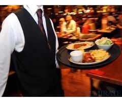 Waiter Or Waitress Required for Grub Shack in Dubai