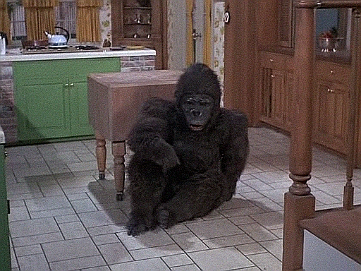 Bewitched: Season 7, Episode 22 Darrin Goes Ape (11 Mar. 1971)