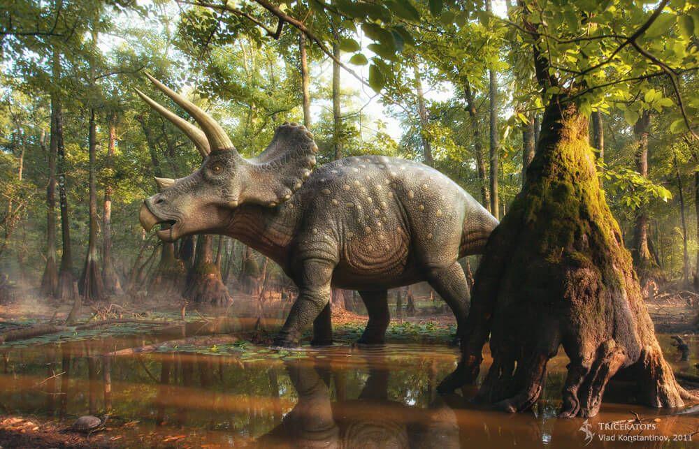 Fascinating 3D Dinosaurs by Vlad Konstantinov. Triceratops ...