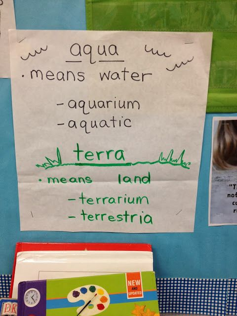 Here's a nice post where one teacher describes how she includes vocabulary instruction in her science classroom.