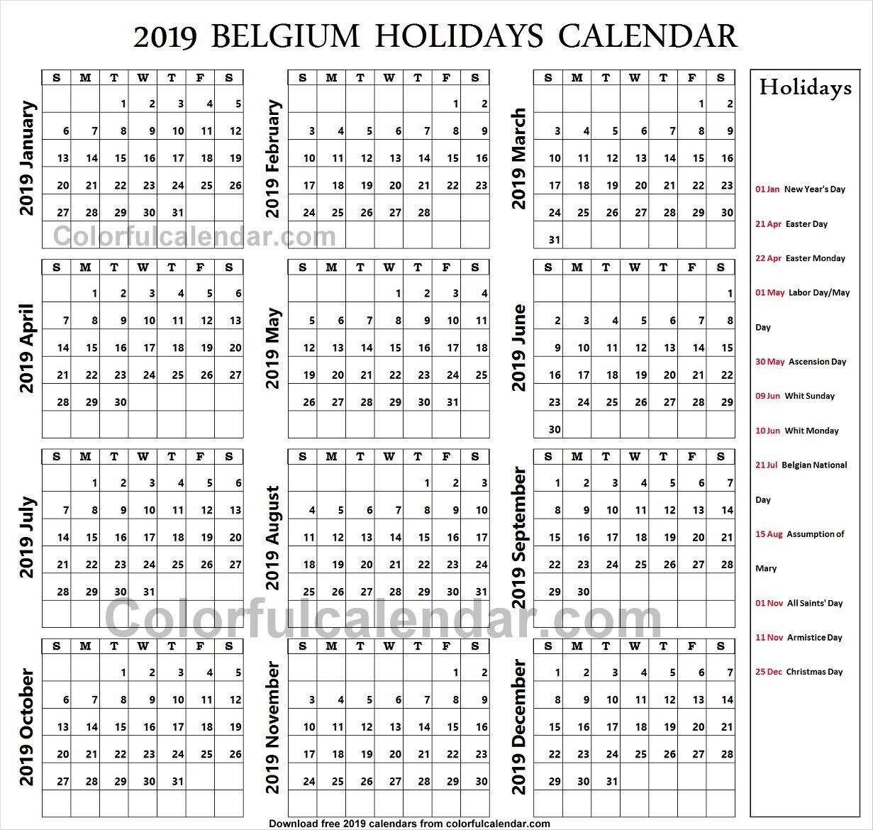 2019 School Holidays Belgium Koh Tao S Most Experienced Padi