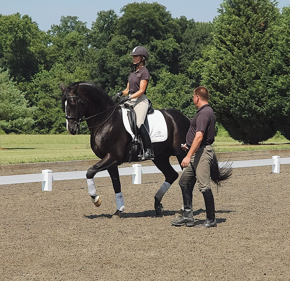 How to article: Build Your Horse's Confidence in Dressage. Learn how to inspire your dressage horse to do his best.