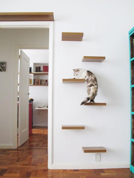 25+ melhores ideias sobre Sala para gatos no Pinterest | Árvores de gato, Casas do gato e Truques gato Quando adotamos um gatinho devemos ter em conta alguns materiais a escolher, como por exemplo, a alimentação, a areia de gato, os brinquedos mas o principal é o seu espaço! Partilhamos neste album algumas ideias! :D