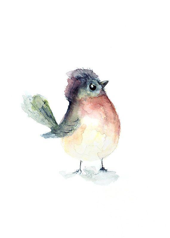 Aquarelle Oiseaux Aquarelle Peinture Oiseau Art Illustration
