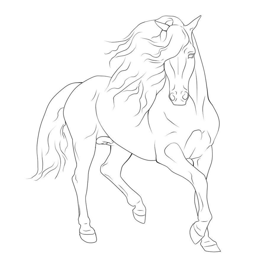 Pin By Liz Simpson On Embroidery Horse Coloring Pages Horse Coloring Horse Drawings [ 889 x 899 Pixel ]