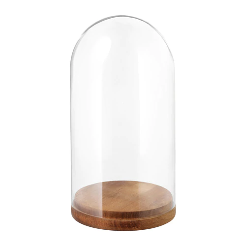 Harliga Glass Dome With Base Clear Glass Height 10 Diameter 5 1 2 Ikea In 2020 Glass Domes Glass Clear Glass