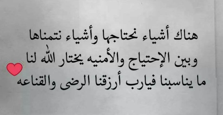 حالات واتس أب حكم وأقوال لفلاسفة ومفكرين Lie Arabic Calligraphy