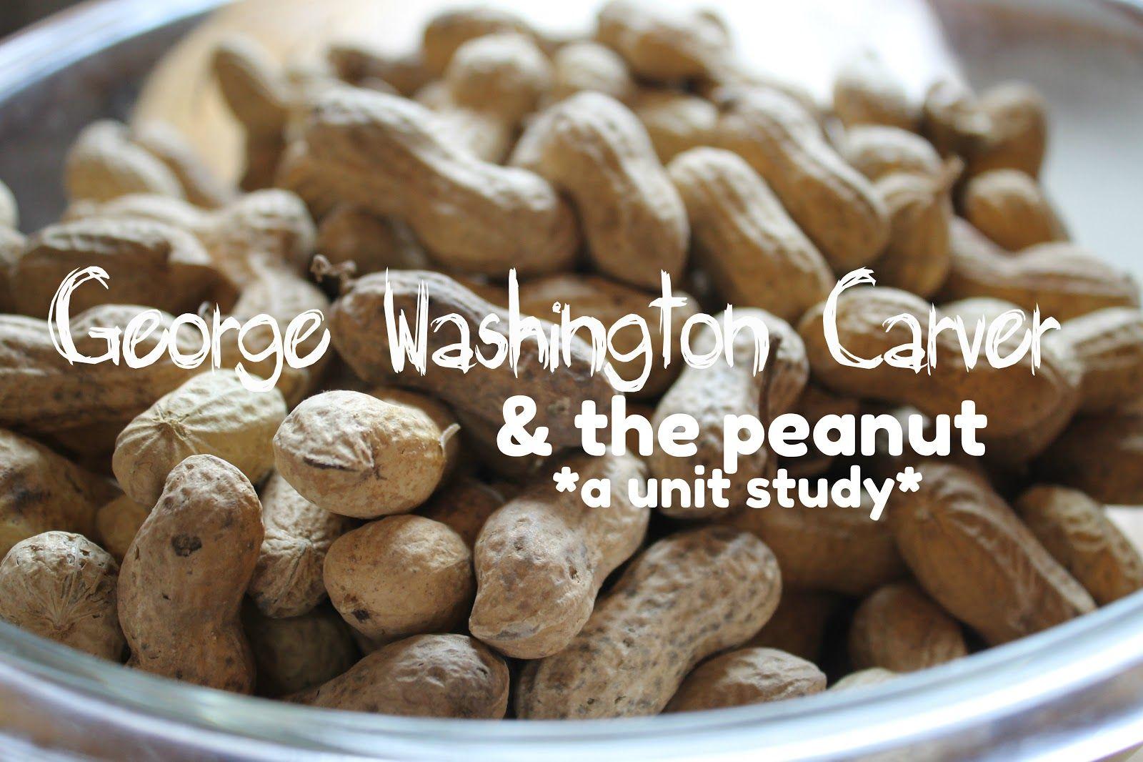George Washington Carver Amp The Peanut A Unit Study