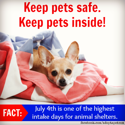 Keep Pets Inside Pet Safety Pet Day Fur Babies