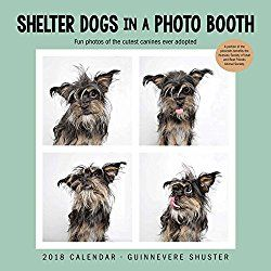 Shelter Dogs In A Photo Booth 2018 Wall Calendar Shelter Dogs
