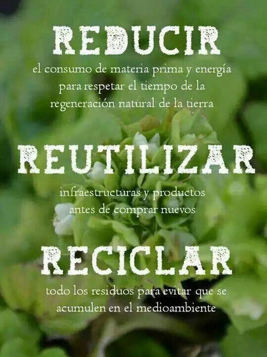 Reutilizar reducir y reciclar  Ecology  Conservation