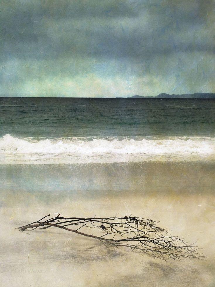Artfinder driftwood arisaig scottish seasca by cath