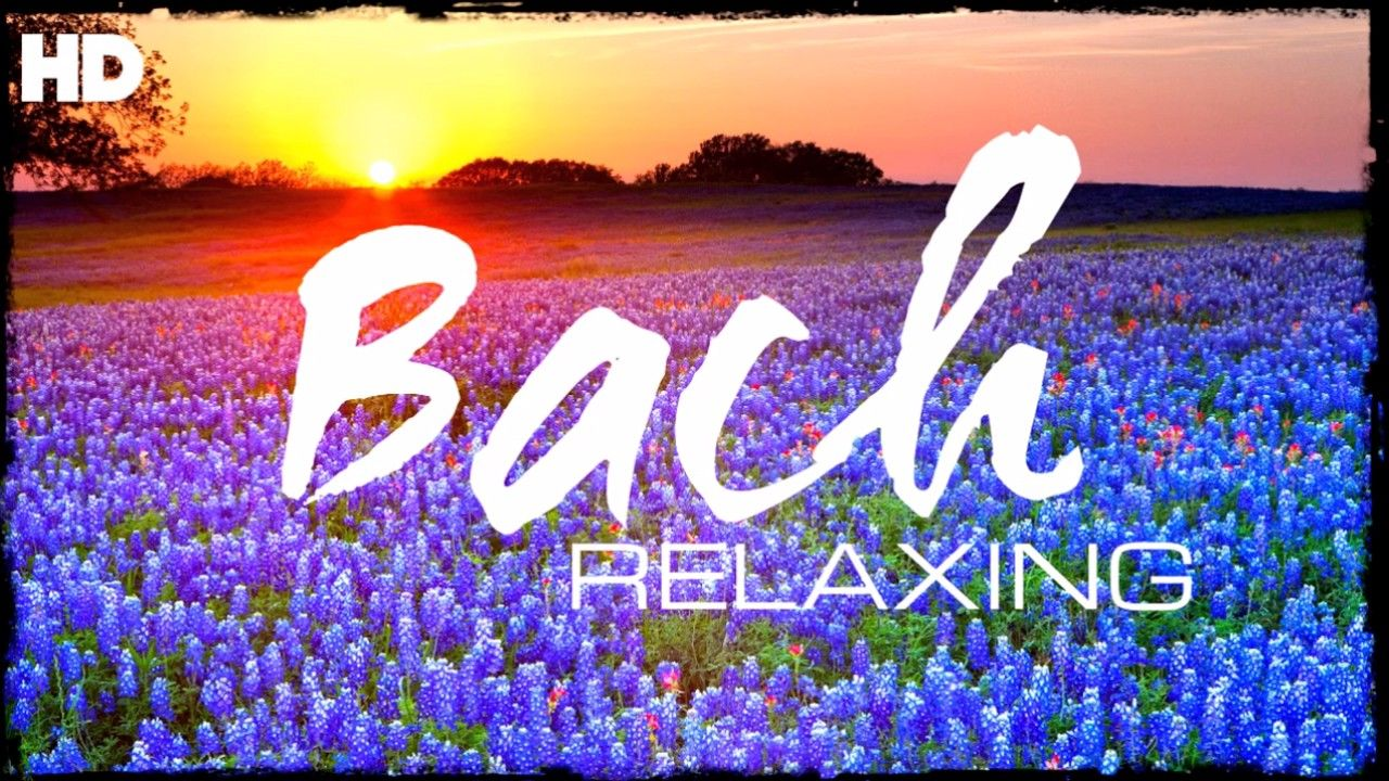The Best Relaxing Classical Music Ever By Bach Relaxation