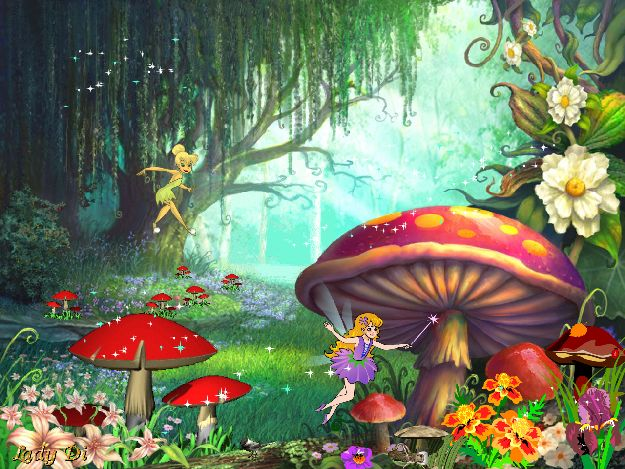 Image result for fairy enchanted woodland