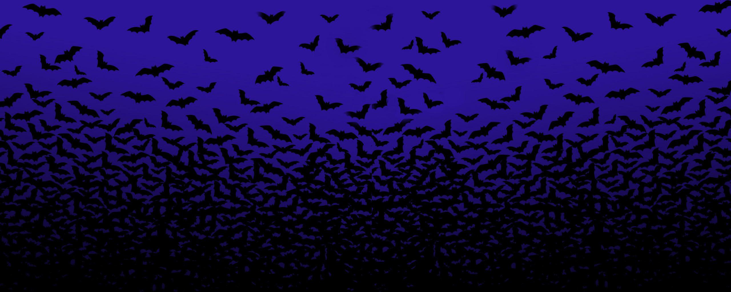 Pin By Jay Curci On T Shirt Madness Halloween Wallpaper Halloween Bats Dual Screen Wallpaper