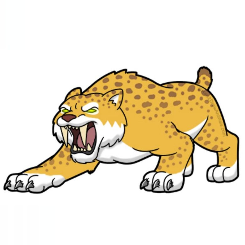 How To Draw A Smilodon Cartoon Video Step By Step Pictures