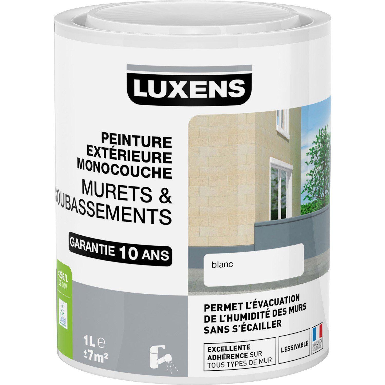 Peinture Muret Et Soubassement Luxens Blanc 1 L Leroy