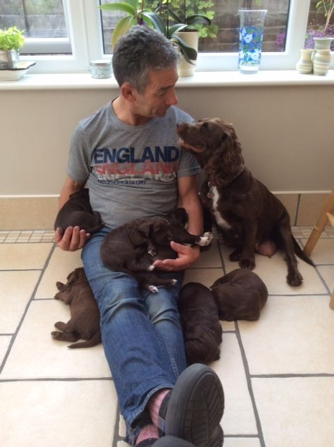 Didn't I do well Dad! Proud Ruby with her puppies http://bit.ly/1R8KoB8