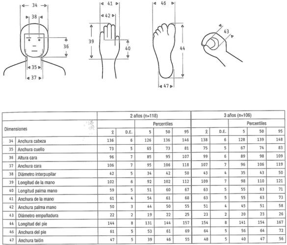 resultado de imagen para medida mano ni o tres a os