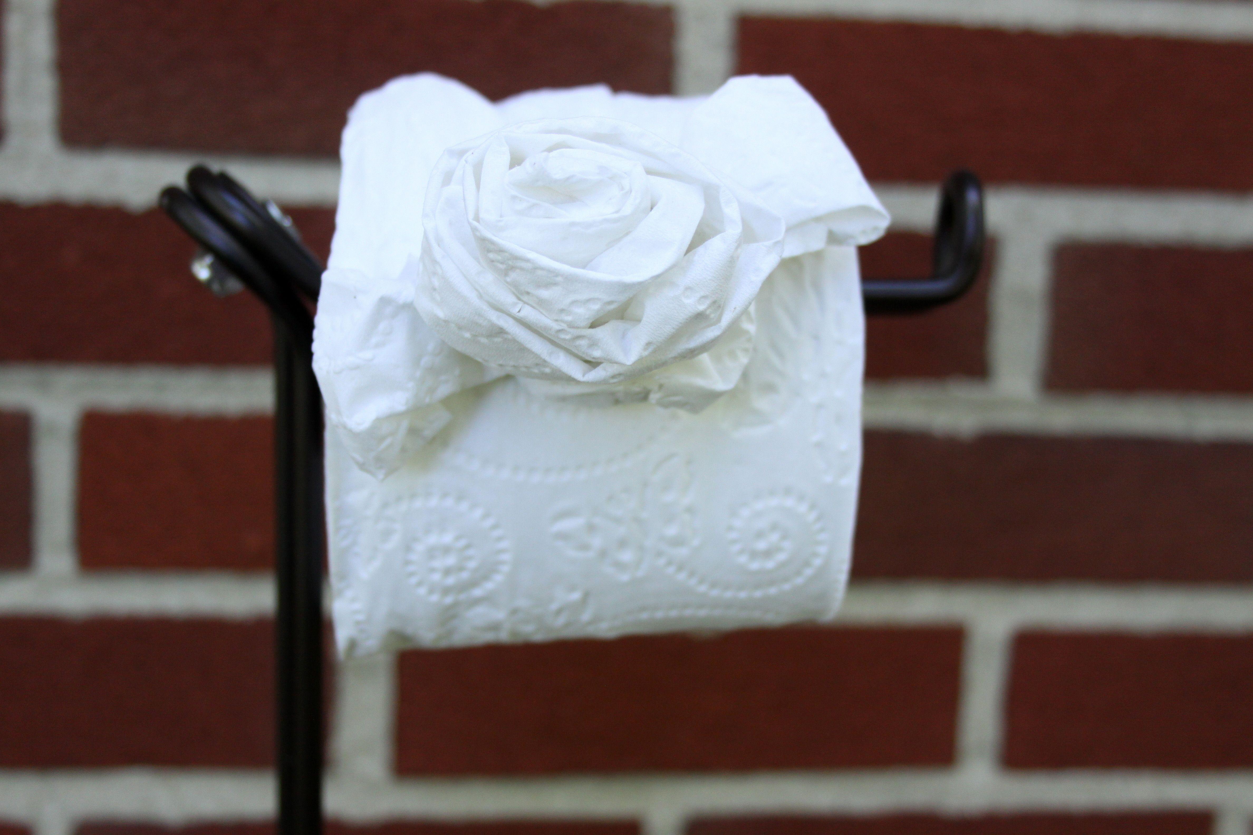 Diy toilet tissue origami crafts toilet paper origami toilet diy toilet tissue origami crafts mightylinksfo
