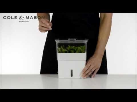 Pin On Plants Gardening 400 x 300