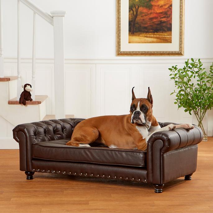 Wentworth Tufted Dog Sofa For Radley In 2020 Tufted Dog Bed Dog Sofa Bed Dog Sofa